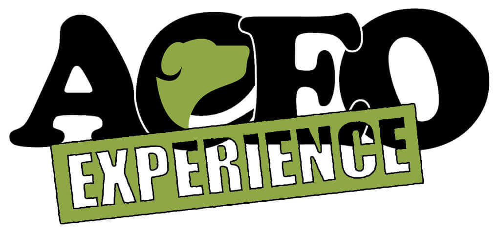 ACEO EXPERIENCE LOGO