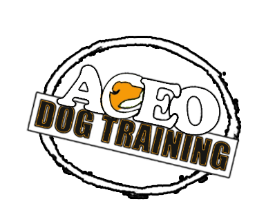 aceo dog training2